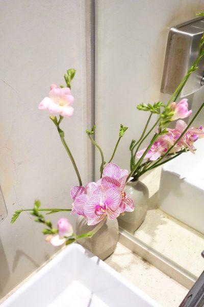 春日粉俏綠草如茵