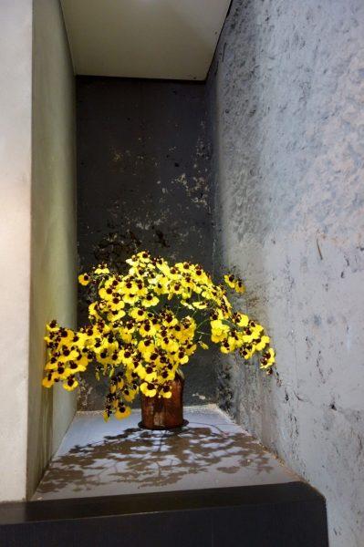 恭賀新年-金蕊春暖隨