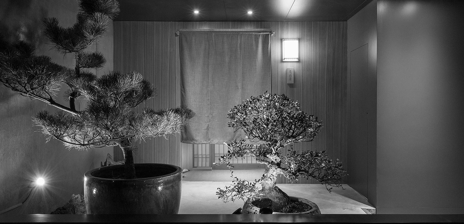 商業空間, 室內裝修, 室內設計, 限時優惠, 庭院植物規劃購置
